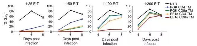 Optimized CAR T cellscontrol HIV-1 replication better and expand to greater levels in vivo than first generation CAR T cells(图片来源 PLoS Pathogens)