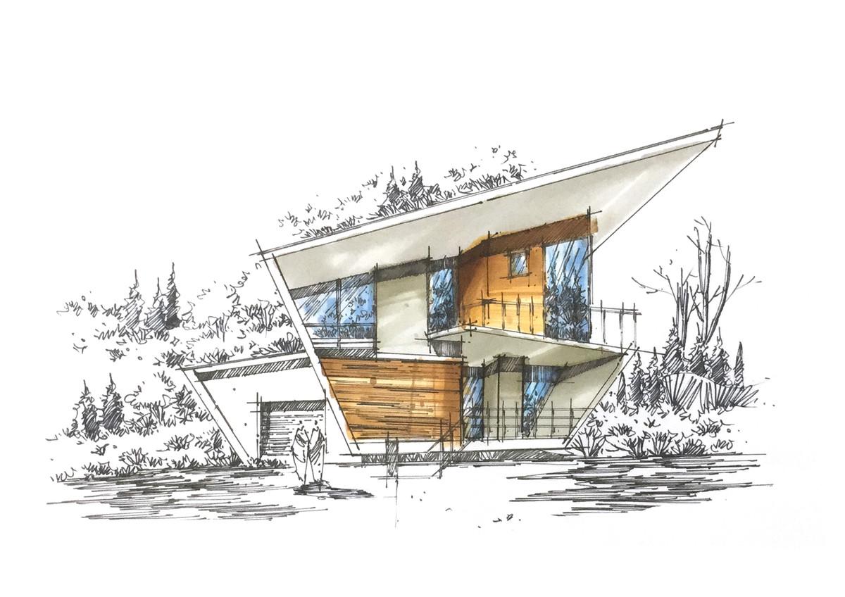 建筑松树画法 手绘