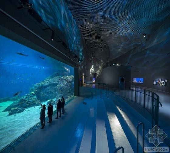 【青岛手绘】手绘丹麦蓝色星球水族馆