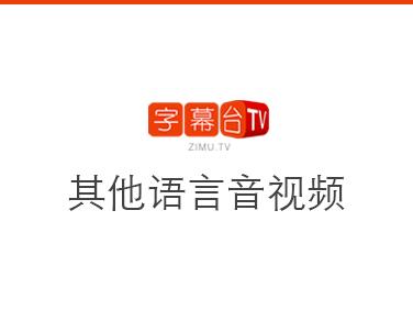 其他语言音视频转文字或字幕
